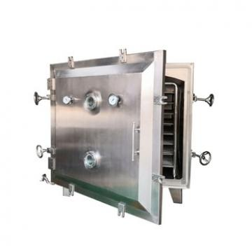 Low Temperature Vacuum Drying Machine/ AISI 304 /316L Double Cone Rotary Vacuum Dryer for Drying Food/Chemical/Medicine Powder/Particles