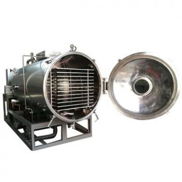 Low Temperature Industrial Electric Vacuum Microwave Tray Oven Dryer