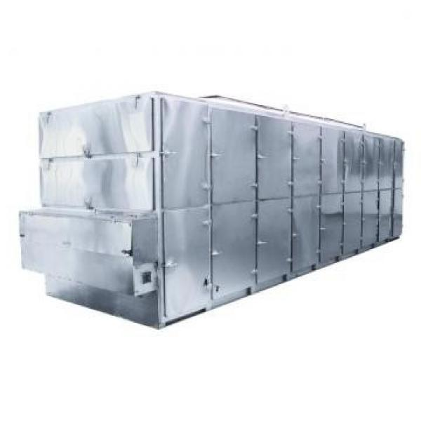 Automatic Tunnel Microwave Vacuum Industrial Continuous Mango Soya Dryer Small Drying Machine for Fruit and Vegetable Low Price #2 image