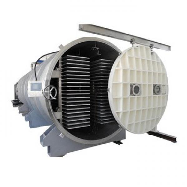 Vacuum Freeze Dryer for Fruit/Pet Flakes/Rice/Grain/Industrial/Pet/Food #1 image