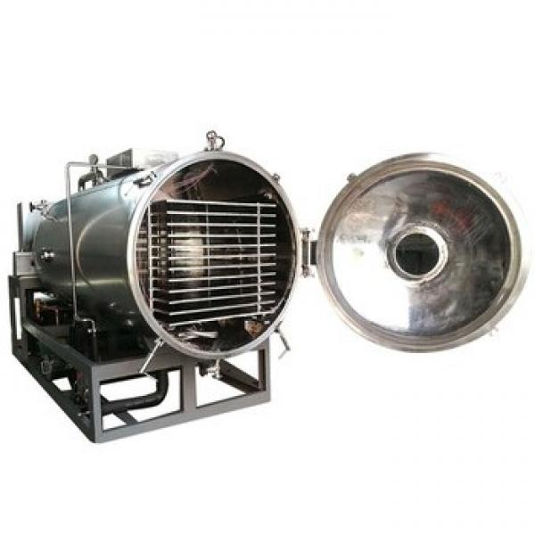 Hot Sale AISI304 or 316L Low Temperature Vacuum Dryer Steam/Hot Water/ Thermal Oil Heating for Drying Food, Chemicel, Pharmaceutical Powder/Beads/Particles #1 image