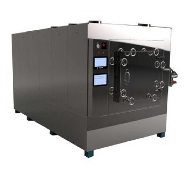 Low Temperature Industrial Electric Vacuum Microwave Tray Oven Dryer #3 image