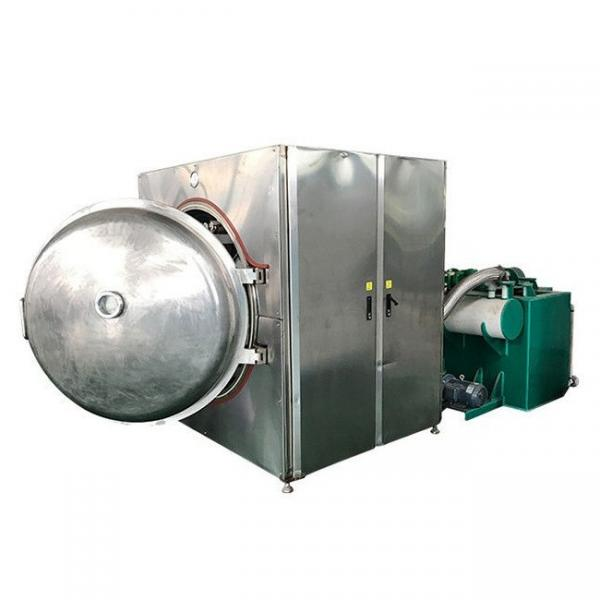 Tunnel Continuous Industrial Mealworm Microwave Vacuum Oven Dryer #1 image