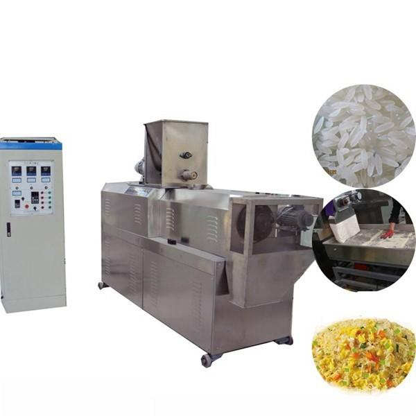 High Capacity Artificial Nutritional Rice Food Screw Extruder Making Machine #1 image