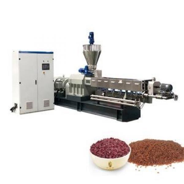 Twin Screw Conveyor Artificial Rice Extruder Machine #2 image