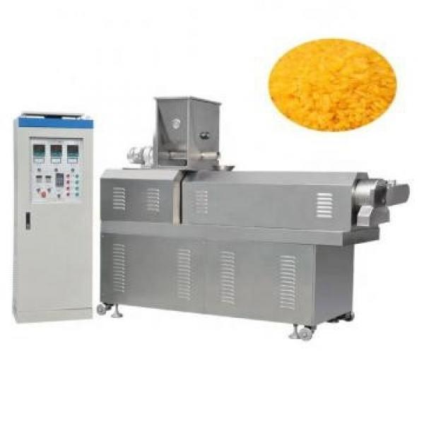 High Capacity Artificial Nutritional Rice Food Screw Extruder Making Machine #2 image