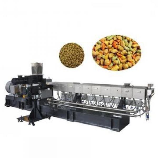 China Professional Twin Screw Extruder Pet Food Extruder Animal Feed Making Machine Dog Cat Fish Bird Pellet Making Machine #3 image
