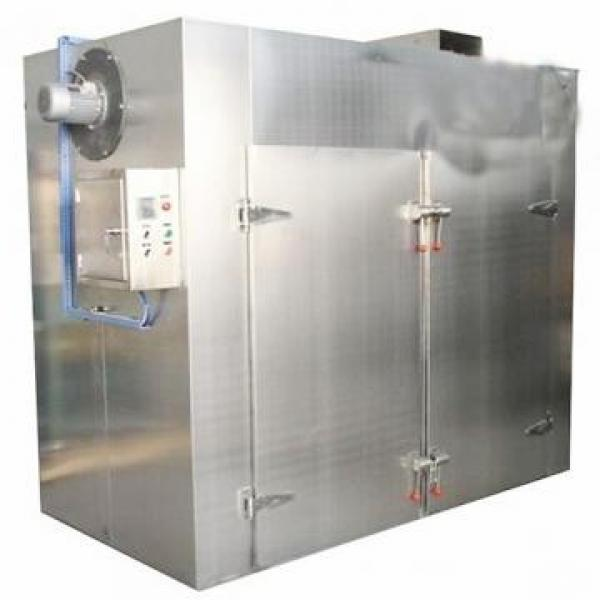 Factory Supplied Hot Air Meat Vegetable Fruit Dryer Machine #1 image