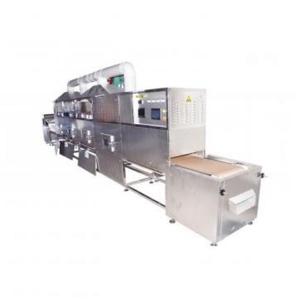 Tunnel Microwave Vacuum Industrial Dryer Tea Leaf Drying Machine for Dryed Herbs #3 image