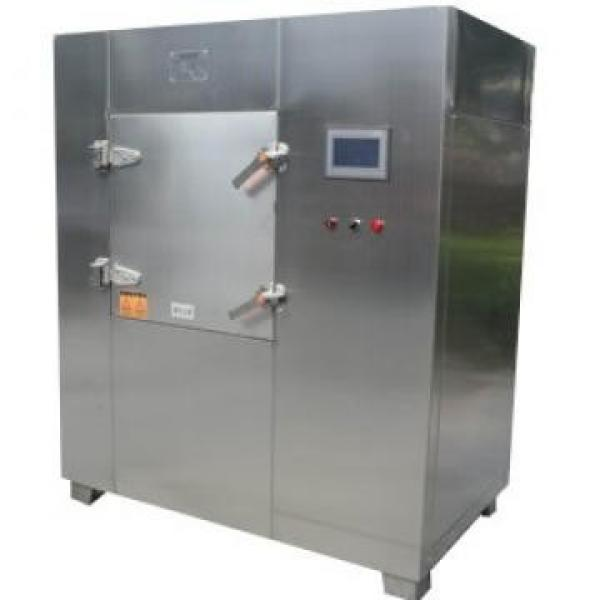 Microwave Vacuum Drying/Dryer/Drier/Puffing Machinery for Slices #2 image