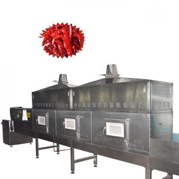 Microwave Vacuum Tray Drying Equipment in Food Industry #2 image