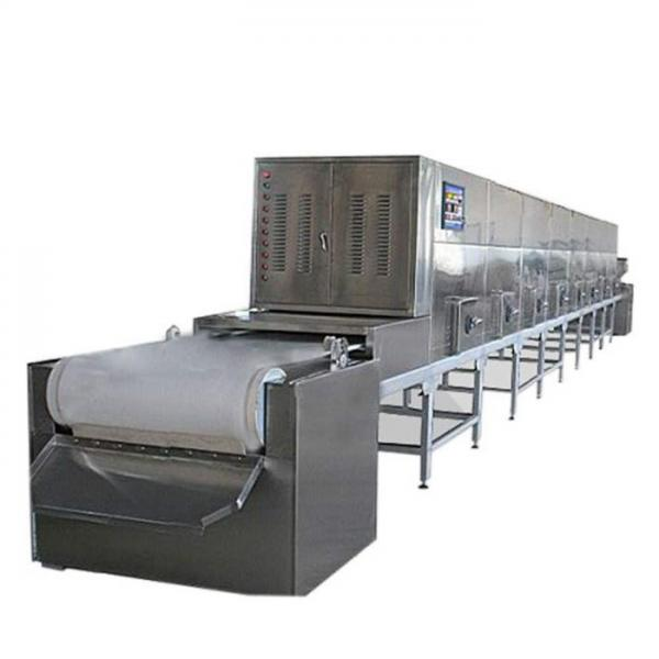 Tunnel Microwave Vacuum Industrial Dryer Tea Leaf Drying Machine for Dryed Herbs #1 image