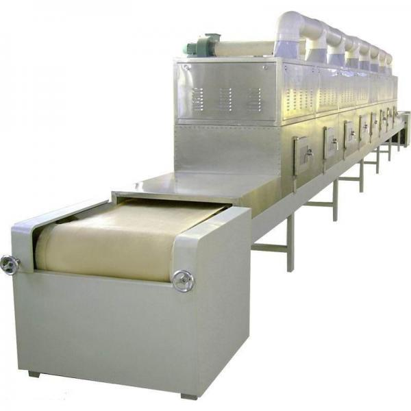 PLC Control Microwave Frozen Fish Thawing Machine #2 image