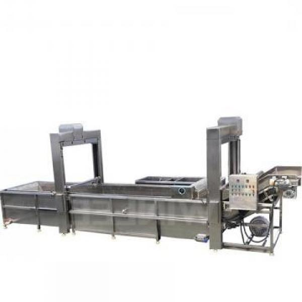 High Efficiency Thawing Machine for Frozen Sea Meat Food #1 image