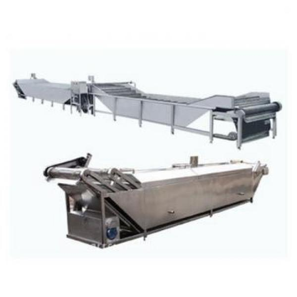High Efficiency Thawing Machine for Frozen Sea Meat Food #2 image