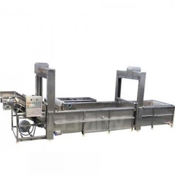 Industrial Tunnel Microwave Oven Drying Sterilizing Thawing Machine #1 image