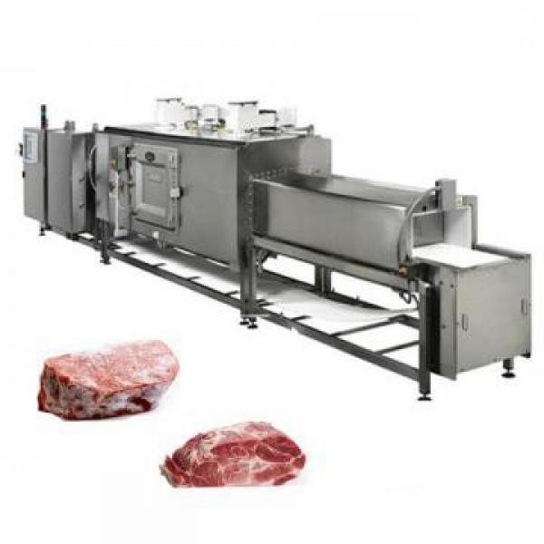 Wasc-11 Ce Certificate Commercial Heating Function Frozen Meat Thawing Machine #2 image