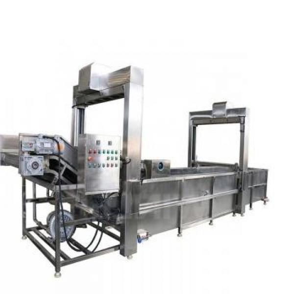 Microwave Frozen Fish Thawing Machine #1 image
