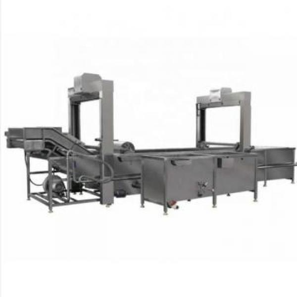 Industrial Leaf Vegetable Washer Salad Lettuce Cabbage Washing Cutting Thawing Processing Machine (TS-X680S) #2 image