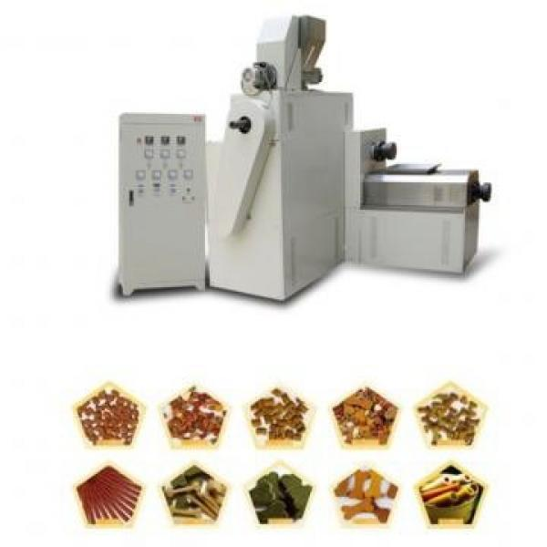 High Efficiency Good Quality Industrial Treats Extruder Pet Dog Food Making Machine #3 image