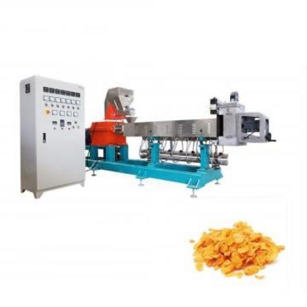 Automatic Liquid Pouch Making Filling Sealing Grain Solid Snack Food Packing Machine #1 image