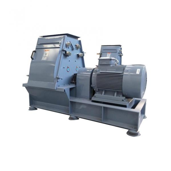 CE Certificated Floating and Sinking Fish Feed Production Line #3 image