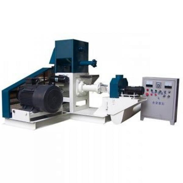 Automatic Floating Pellet Fish Feed/Food Production Line with Ce #3 image