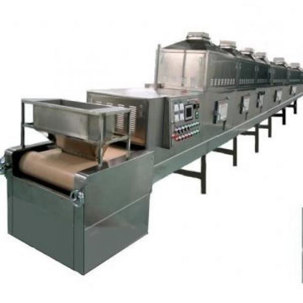 Microwave Leaves Grain Nuts Fruit Vegetable Dryer Drying Sterilization Machine #2 image