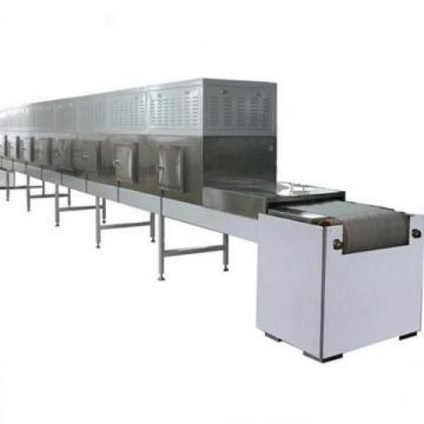 Microwave Leaves Grain Nuts Fruit Vegetable Dryer Drying Sterilization Machine #3 image