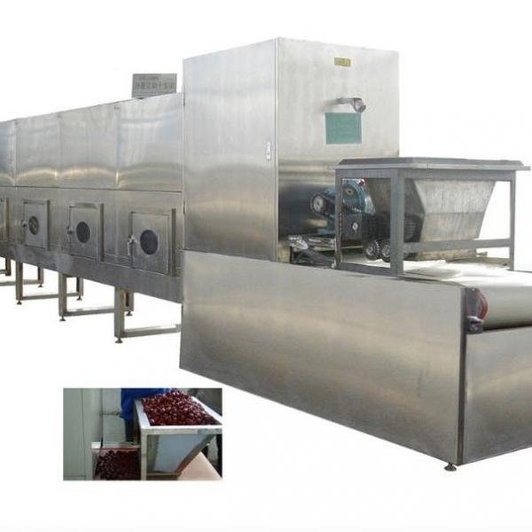 Microwave Leaves Grain Nuts Fruit Vegetable Dryer Drying Sterilization Machine #1 image