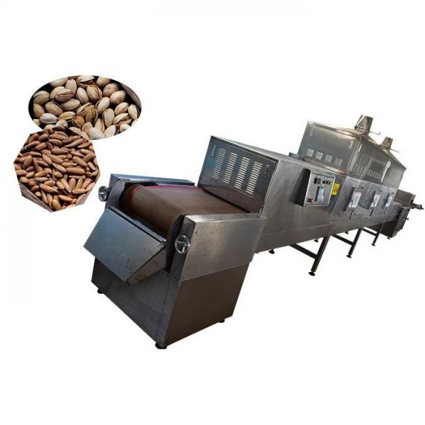 Stainless Steel Microwave Tunnel Herb Stevia Drying Machine Dryer #1 image