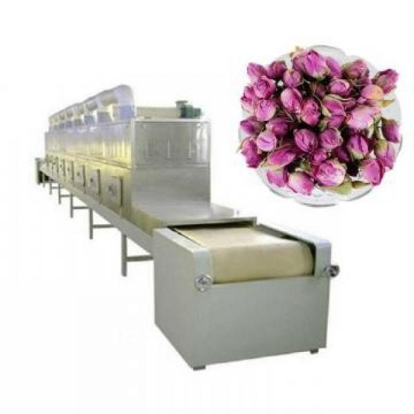 Automatic Tunnel Microwave Dryer Shiitake Mushrooms Sterilization Machine #2 image