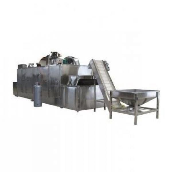 (KT) Liquid Microwave Dryer& Sterilizer/Microwave Drying and Sterilizing Machine #1 image