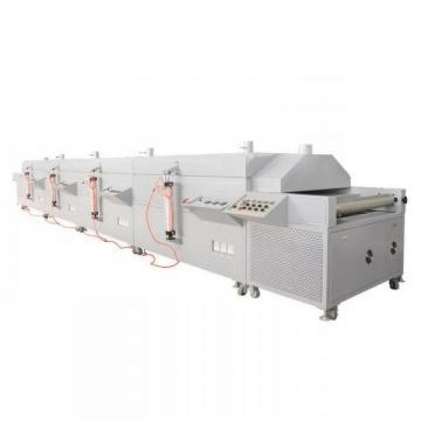 Automatic Tunnel Microwave Dryer Carrot Sterilization Machine #1 image