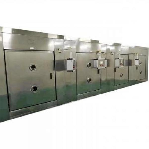 Electric Continuous Tunnel-Type Microwave Oven Dryer #2 image