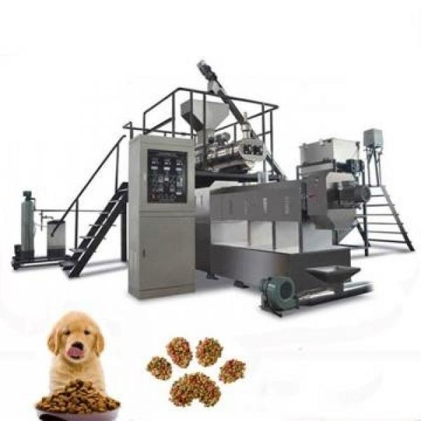 2020 Hot Sales 100kg-6t/H Automatic Dog Cat Fish Shrimp Bird Pet Snack Food Extruder Plant Production Line Equipment Machine Fish Feed Machine #3 image